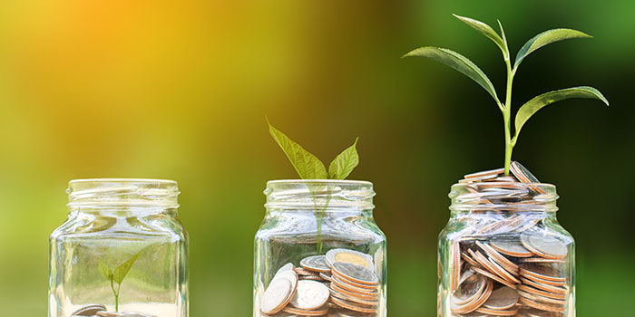 Revitalize Your Investing Garden